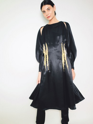Bishop Sleeves Dress